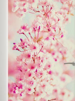 Adesivo de Porta Flores