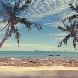 Painel Fotográfico Praia Coqueiros Vintage
