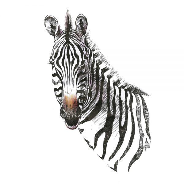 Painel Fotográfico Zebra