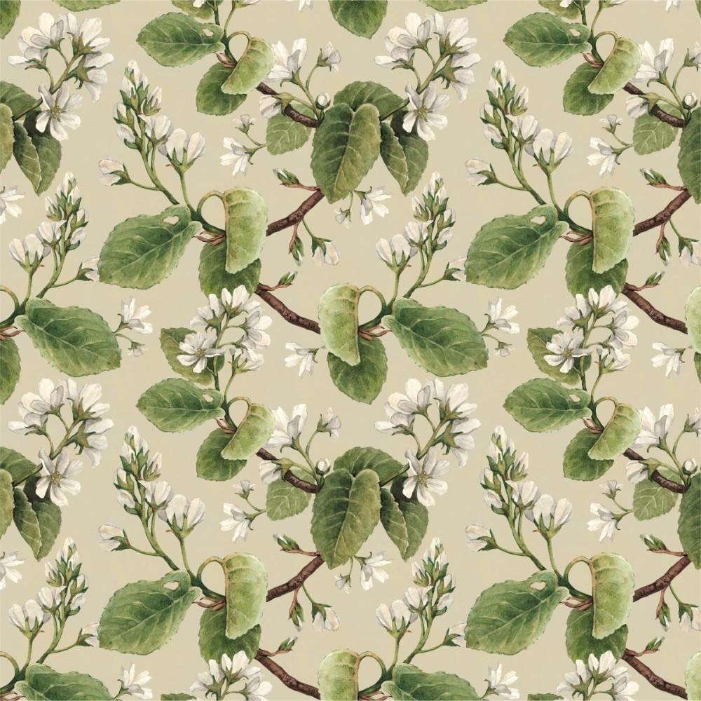 Papel De Parede Adesivo Floral Folhagem Stickdecor -> Papel De Parede Sala Floral