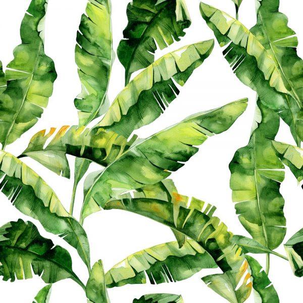 Papel de Parede Adesivo Folhas de Bananeira