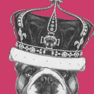Placa Decorativa Dog Hipster