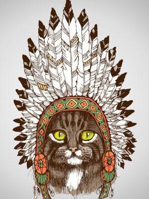 Placa Decorativa Gato Cocar