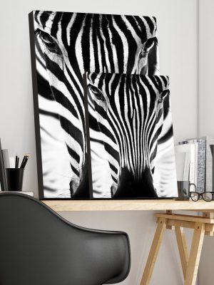 Placa Decorativa Zebra